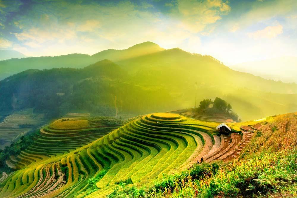 Mu Cang Chai 1