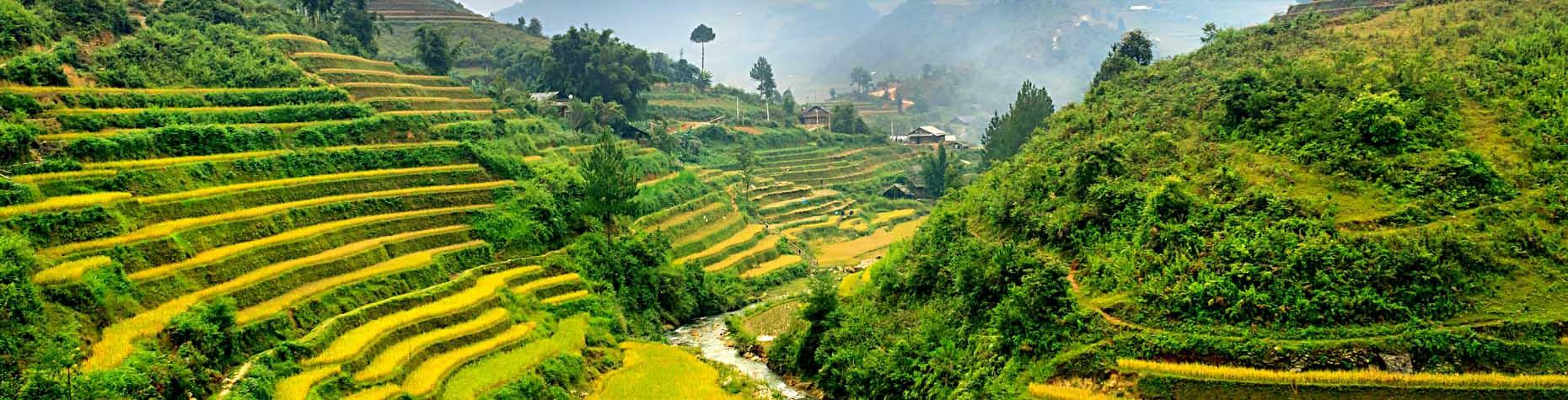 Must see: terrasvormige rijstvelden in Vietnam